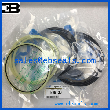 Everdigm EHB30 Hammer Seal Kit