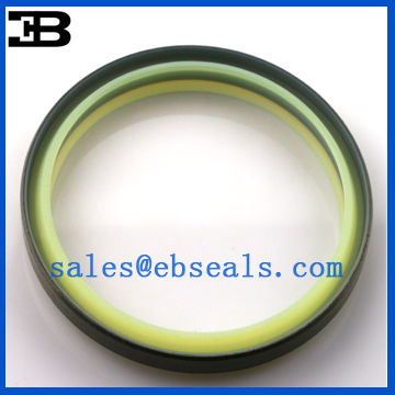 FD3828-G DKBI Dust Seals