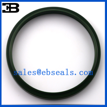 FQ0066-C0 LBI Oil Seal