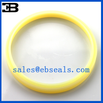 FQ0066-D0 DSI Oil Seal