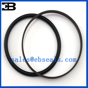 GS1813-V0 SPGO Oil Seal